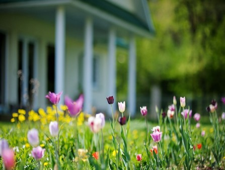 5 Essential, Springtime Painting Tips For Your Commercial Property